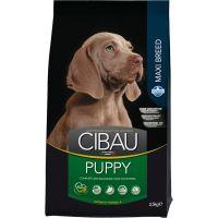 Hrana uscata pentru caini Cibau Puppy Maxi, 2.5 Kg