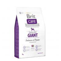 Hrana uscata pentru caini Brit Care Grain-Free Giant Somon si Cartofi, 3 Kg