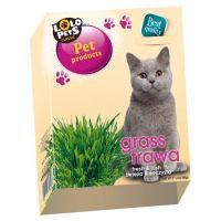 Iarba pentru pisici Lolo Pets, 100 g