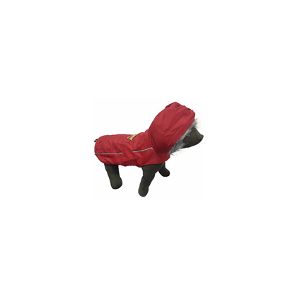 Haina pentru Caine, Pet Expert Comfort Red