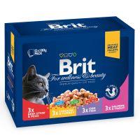 Hrana umeda pentru Pisici Brit Premium Cat plic Family Variety 12 Plicuri x 100 gr