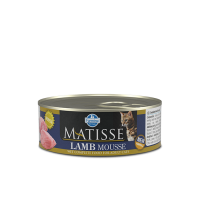 10 x Matisse Mousse cu Miel, 85 g