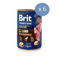 6 x Brit Premium By Nature cu Miel si Hrisca, 400 g