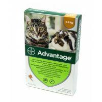 Advantage 40, Pisica si Iepure, 4 pipete