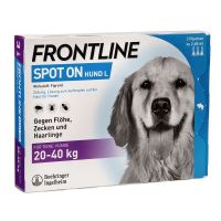 Pipete Antiparazitare Caini, Frontline Spot-On Dog L (20-40 kg) x 3 pipete