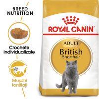 Hrana uscata pentru Pisici, Royal Canin British Shorthair Adult, 2 kg
