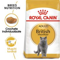 Hrana uscata pentru Pisici, Royal Canin British Shorthair Adult, 10 kg