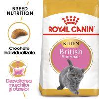 Hrana uscata pentru Pisici, Royal Canin British Shorthair Kitten, 10 kg