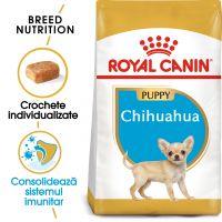 Royal Canin Chihuahua Puppy, 500g