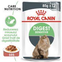 Pachet Royal Canin Digest Sensitive, 12 plicuri x 85 g