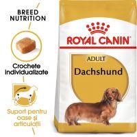 Royal Canin Dachshund (Teckel) Puppy, 1.5 kg