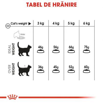 Hrana uscata pentru Pisici, Royal Canin Oral Care, 8 kg