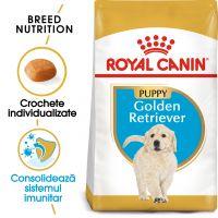 Royal Canin Golden Retriever Puppy, 1 Kg