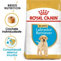 Royal Canin Labrador Retriever Puppy, 3 Kg