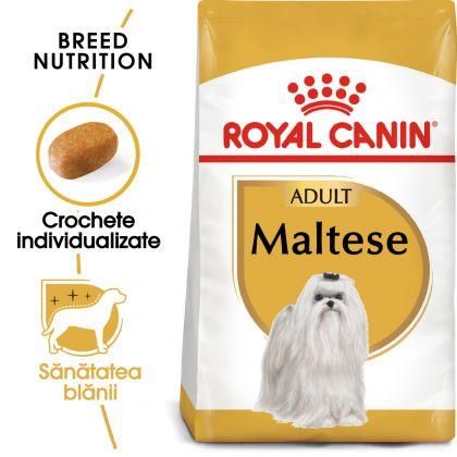 Royal Canin Bichon Maltese Adult 500g