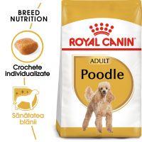 Royal Canin Poodle (Caniche) Adult, 1.5 Kg