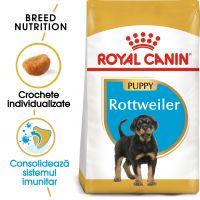 Royal Canin Rottweiler Puppy, 12 Kg