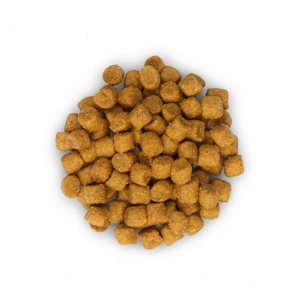 Hrana uscata pentru pisici Hill's SP Feline Adult Optimal Care cu Iepure, 10 Kg