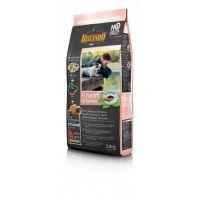 Hrana uscata pentru caini Belcando Finest Grain Free cu Somon, 1 Kg